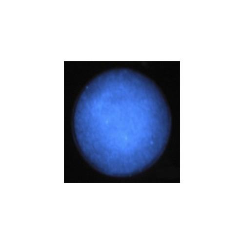 LUMINESCENT BLUE